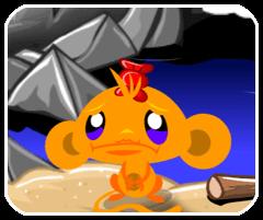 Chú khỉ buồn 41
