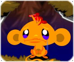 Chú khỉ buồn 48