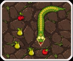 Rắn ăn hoa quả