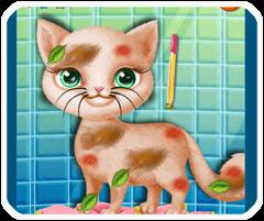 Chữa thương cho mèo
